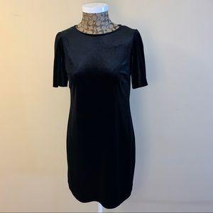 NWT Little Black Velour Dress US Size 6